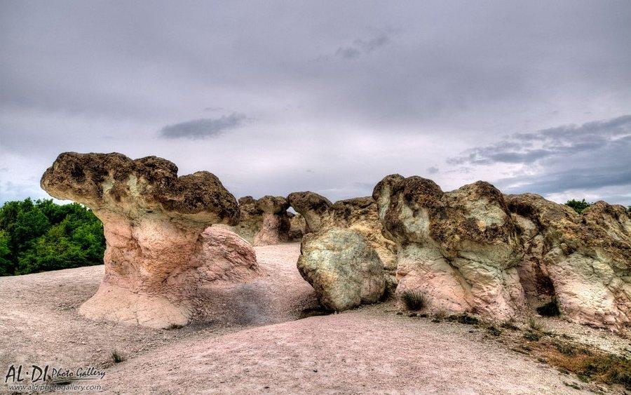 Каменни гъби - природна забележителност