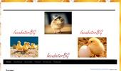 ИнкубаторБГ- Инкубатори за малки стопанства.