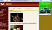 Сайт за котките