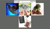 Как да изкараме бързи пари от Интернет
