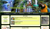 Българският сайт за обяви на папагали и домашни любимци